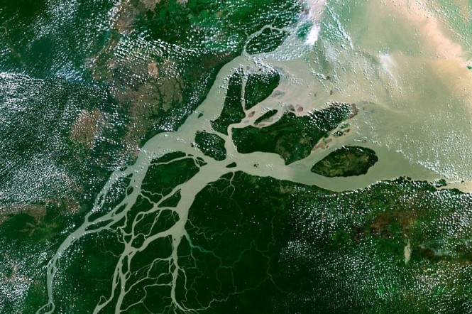Amazonas delta från rymden
