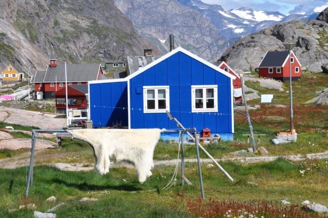 isbjörnsfällen