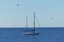 I farvattnen runt Nidingen sägs det ligga omkring 700 vrak, vilket gör ön till Sveriges mest olycksdrabbade fyrplats.